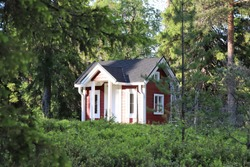 A cozy small red cottage bathing in sunlight in the middle of a green forest with pines and spruces. The cottage is a guest house which can be used as a play house or for storage. Selective focus.