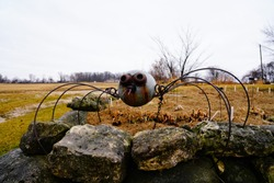 A Created Old Vintage Metal rustic spider yard statue sits near vintage old parish school house outside of Campbellsport, Wisconsin