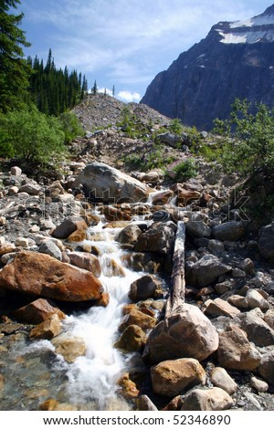 A creek view in Banff national park.