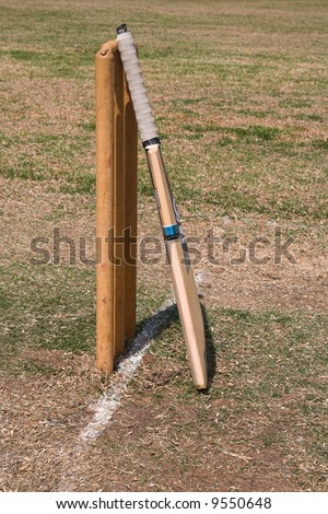 cricket bat logo. stock photo : a cricket bat