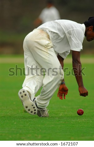 A cricket catcher trying to catch a cricket ball.