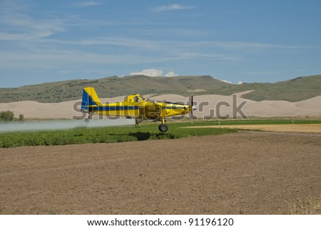 A crop duster applies chemicals to a field of potatoes.
