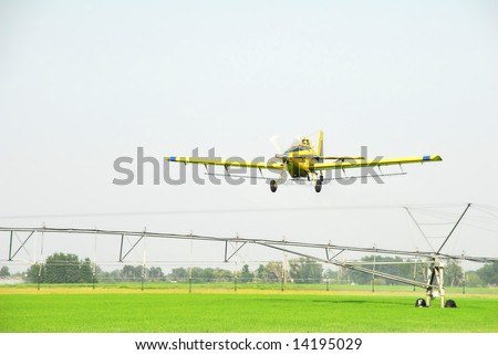 A crop duster or spray plane flies over a an irrigation system in a green grain field.