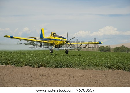 A crop duster sprays a field of Idaho potatoes.