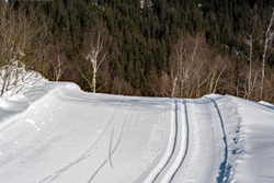 a cross country ski run in the mountain on a sunny day with a forest in the background