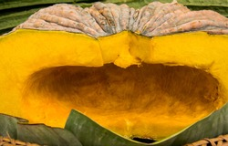 A Cross section of an Asian pumpkin and seeds removed. Golden texture of pumpkin meat with rough peal yellow-green skin