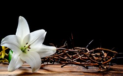 A crown of thorns and a Easter Lilly on a black background with copy space
