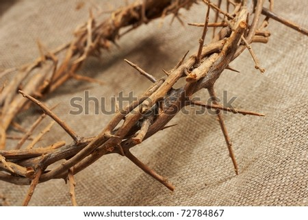 a crown of thorns on canvas  background