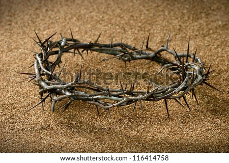 A crown of thorns on sandy background