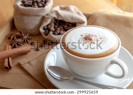 A cup of cappuccino with spoon