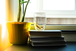 A cup of hot tea with lemon is on the windowsill on a pile of books, steam comes out of the cup. Yellow flower pot with green plant. Sunbeam. Cozy Hygge home on windowsill