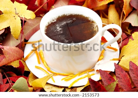 A cup of Orange Pekoe Tea on a saucer surrounded by autumn leaves