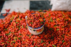 A cup of red hot chilli on a pile of chilli