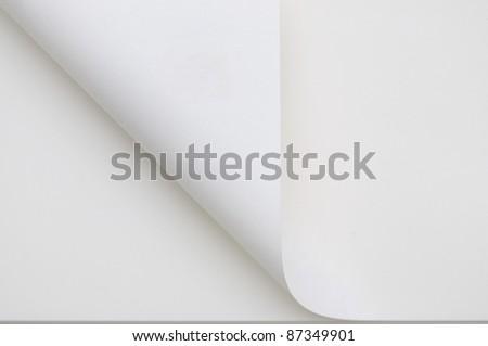 a curl paper