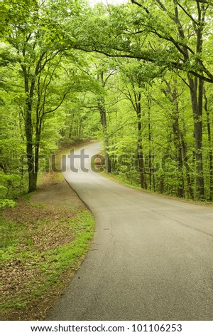 A curved road through a state park in central Indiana in springtime. - Shutterstock ID 101106253