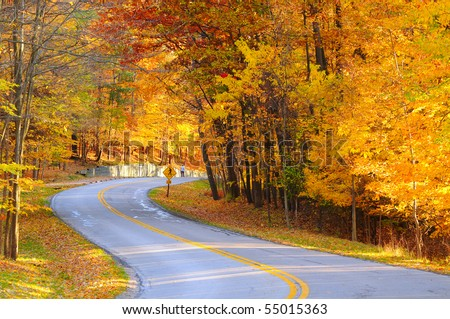 stock-photo-a-curving-autumn-road-with-a-hiker-in-the-far-distance-55015363.jpg