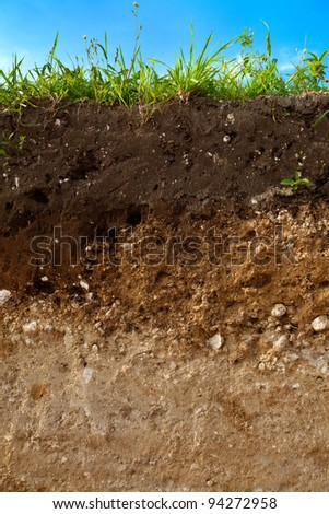 A cut of soil with different layers visible and grass on top #94272958