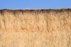 A cut of soil with several layers visible and dried grass on top