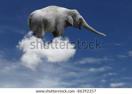A cute baby elephant floating on a puffy cloud in a blue sky.