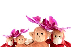 A cute couple of monkey is sitting with fresh orchids flower