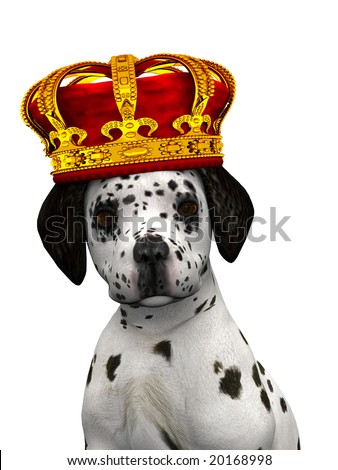A cute dalmatian puppy with a crown on his head isolated on white.