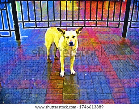 A cute dog with big ears looks at you in a painting style Fauvism