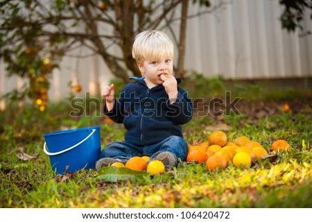 A cute little blonde 1 year old boy sitting outdoors on the ground surrounded by oranges.  He is on a orchard and has a blue bucket