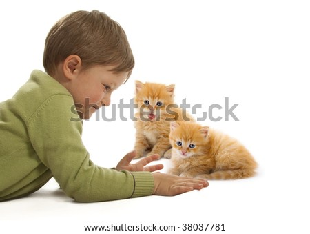 A cute little boy playing with a baby cat