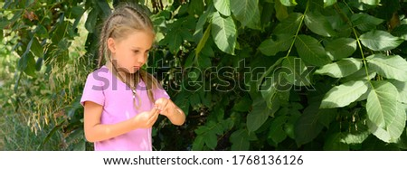 a cute little six year old kid girl walking against a background of green leaves of tree during his summer vacation. banner