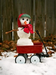 a cute miniature snowman in a red wagon