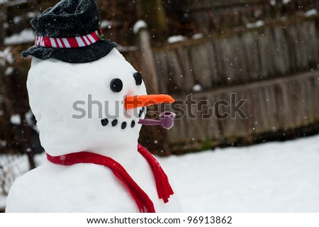 A cute, smiling snowman in winter.