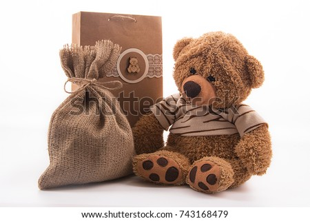 A cute teddy bear toy and a handmade gift bag on a white background.
