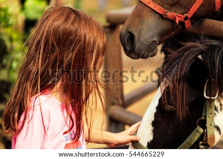 A cute white girl touches the big brown strong horse in the farm