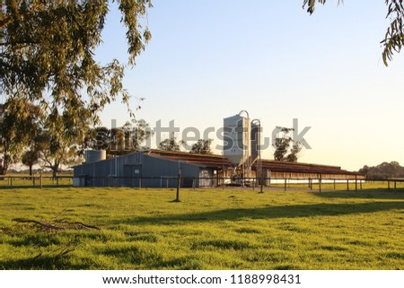 A dairy farm in a rural area at sunset. Peaceful countryside scenery. #1188998431