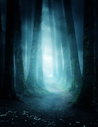 A dark and moody forest at night with a pathway leading through it. Photo composite.
