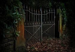 A dark, moody photograph of a rusty, pair of ancient iron gates left ajar, amidst foliage, both dead and alive.