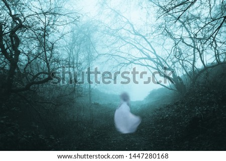 A dark, spooky forest with a ghostly woman in a white dress, on a foggy winters day. With an old artistic vintage edit. Foto stock ©