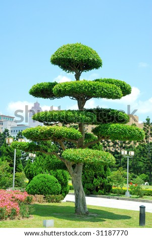 a decorated tree in the garden #31187770