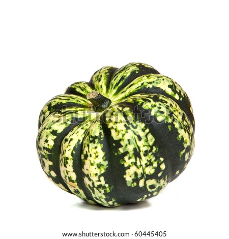 Leo's first garden - Page 2 Stock-photo-a-decorative-green-squash-or-gourd-variety-harlequin-on-a-white-background-60445405