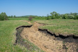 A deep clay ravine formed by erosion by a water stream. Soil erosion.