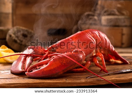 A delicious freshly steamed lobster in the rough. #233913364