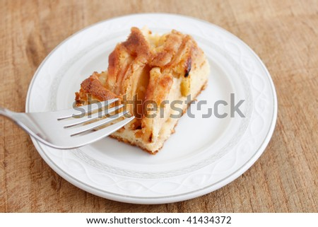 A delicious piece of apple cake - stock photo