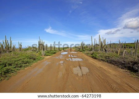 A desert road on the north side of Bonaire - stock photo