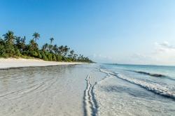 A deserted beach on the tropical island of Zanzibar