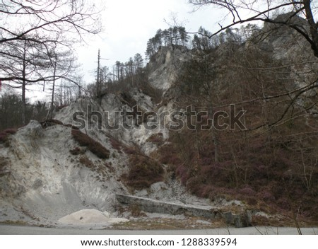 a deserted gray rocky landscape covered with spruce and spruce spruce and pine trees that have been damaged. A region like the moon #1288339594