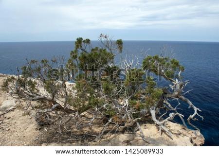 Coast Ibiza Images and Stock Photos - Page: 8 - Avopix com