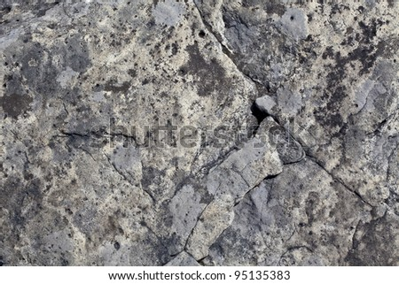 A detailed close up of the face of a boulder. Textured rock full of cracks.