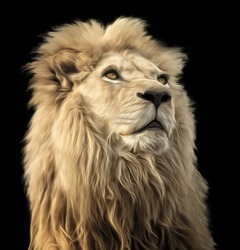 A digital oil painting of a majestic and proud Lion on a black background.