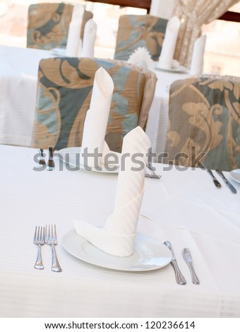 a dinner plate on white table background