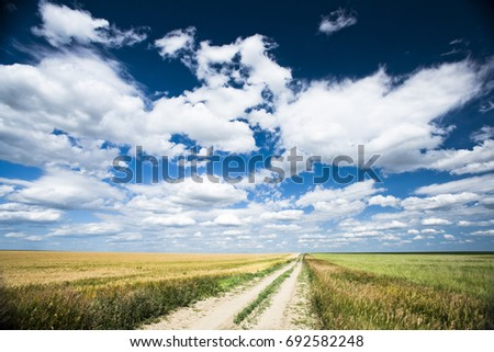 A dirt road cuts through farm land and a sky filled with dramatic clouds.  #692582248
